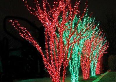 Landmark Design Company Christmas Lights 8